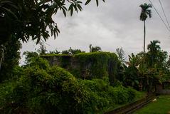 Casa de madeira pobre coberto de vegetação com as plantas verdes, cidade Bintulu, Bornéu, Sarawak, Malásia Imagens de Stock Royalty Free