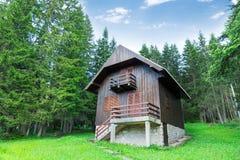 Casa de madeira velha na floresta imagens de stock