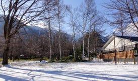 Casa de madera con los árboles de pino en el invierno en Nikko, Japón imagen de archivo libre de regalías