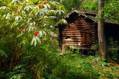 Casa de madera de Traditionnal Fotografía de archivo libre de regalías