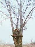 Casa de madera del pájaro Fotografía de archivo libre de regalías