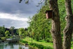 Casa de madera del pájaro en un árbol Imagen de archivo libre de regalías