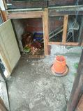 Casa de madera de los pollos imagen de archivo