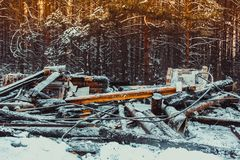 Casa de madera quemada Fotografía de archivo