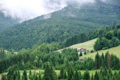Casa de madera tradicional de la montaña en campo verde Imagenes de archivo