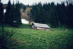 Casa de madera vieja en el bosque cárpato Imagenes de archivo