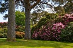 Casa de Muckross em Killarney fotografia de stock royalty free
