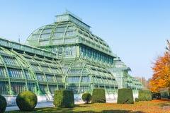 A casa de palma, palácio de Schonbrunn em Viena imagens de stock