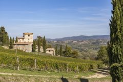 Casa de pedra velha em um monte com os vinhedos no Chianti em Toscânia mim fotografia de stock royalty free