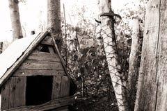 Casa de perro Fotografía de archivo libre de regalías