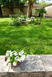 Casa de piedra amarilla medieval antigua, jardín Foto de archivo
