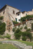 Casa de piedra vieja demasiado grande para su edad con las enredaderas Fotografía de archivo libre de regalías