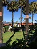 Casa de planta baja de la palmera Fotografía de archivo