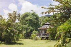 Casa de planta baja empedrada en jardín de la selva foto de archivo