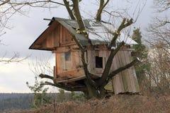 Casa de árbol Foto de archivo