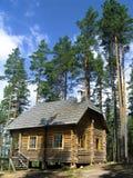 Casa de registro na floresta Imagem de Stock