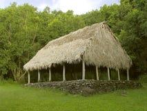 Casa de reunião Thatched Imagem de Stock Royalty Free