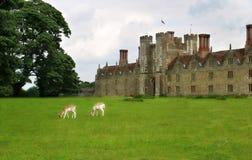 Casa de señorío británica con los ciervos Foto de archivo
