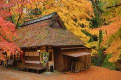 Casa de té en la temporada de otoño Nana, Japón fotos de archivo