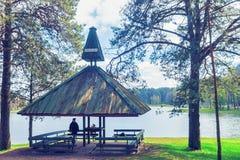 A casa de verão de madeira no lago Druskininkai Druskonis tonificou foto de stock