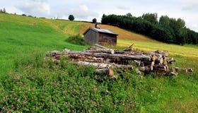 Casa de verano vieja, Noruega Fotos de archivo libres de regalías