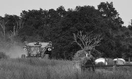 Casa de vinda preto e branco Foto de Stock Royalty Free