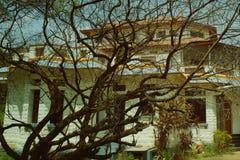 Casa de vista velha assustador da exploração agrícola com uma árvore sobre um monte Imagem de Stock Royalty Free