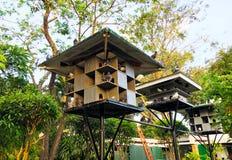 Casa dei piccioni Immagini Stock