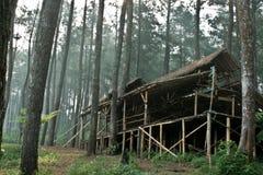Casa del bosque Imagen de archivo