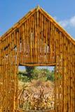 Casa del cereale Fotografie Stock Libere da Diritti