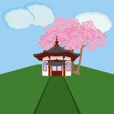 Casa del chino tradicional con Sakura Foto de archivo