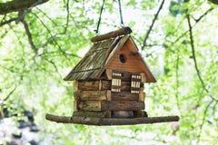 Casa del estornino para los pájaros en árbol en parque del verano Foto de archivo