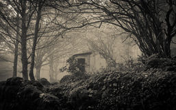 Casa del fantasma nella nebbia Fotografia Stock