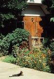 Casa del fiore Fotografie Stock Libere da Diritti