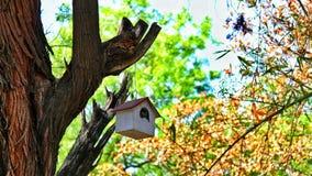 Casa del gorrión Imagen de archivo libre de regalías