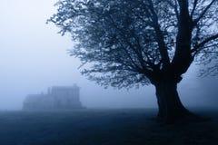 Casa del horror en el bosque en la noche Foto de archivo libre de regalías