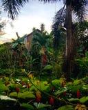 Casa del jardín de Ubud fotos de archivo