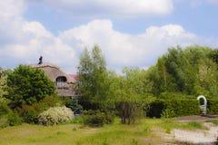 Casa del lago Bello giardino Molta pianta Fotografia Stock