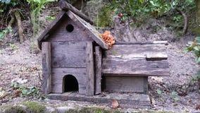 Casa del pájaro Imagen de archivo