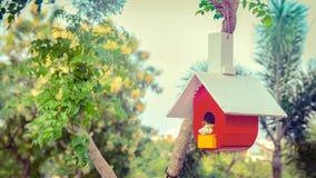 Casa del pájaro en árbol en el jardín Fotografía de archivo libre de regalías