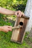 Casa del pájaro en el jardín Fotos de archivo libres de regalías