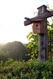 Casa del pájaro en naturaleza Foto de archivo