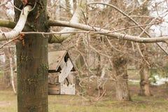 Casa del parque para los pájaros fotos de archivo