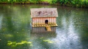Casa del pato en el medio de la charca en la lluvia Fotos de archivo
