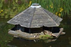 Casa del pato en la charca Fotografía de archivo libre de regalías