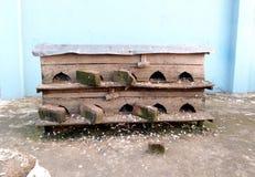 Casa del piccione Fotografie Stock Libere da Diritti