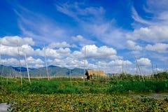 Casa del ` s dell'agricoltore e giardini di galleggiamento sul lago Inle, Myanmar Fotografia Stock Libera da Diritti