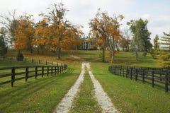 Casa del sud nel paese storico del cavallo di Lexington Kentucky in autunno Fotografie Stock