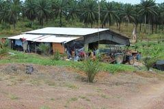 Casa del trabajo del granjero del cultivo de la palma Fotos de archivo libres de regalías
