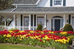 Casa del tulipán Imagen de archivo libre de regalías